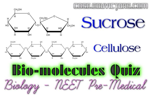 biology mcq with answers pdf for neet
